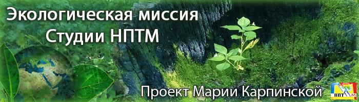 Эксклюзив туризм НПТМ